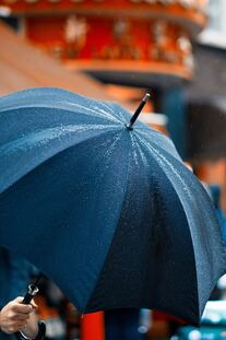Invest in multiple umbrellas. They are a good style accessories and different ones are needed for different usage occasions
